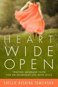 Heart-Wide-Open_HighRes