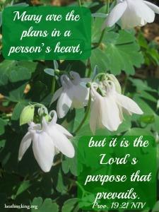 proverbs19