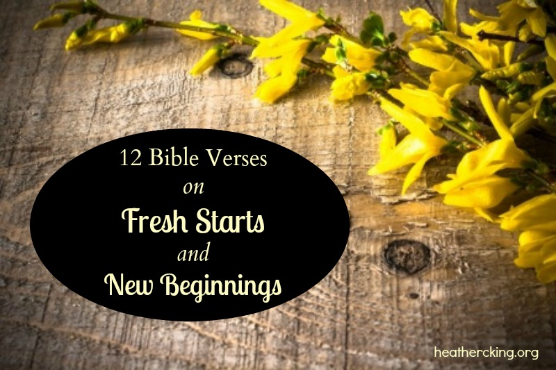 12 bible verses on fresh starts and new beginnings