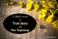 verses-new-beginnings