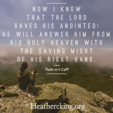 psalm 20-6